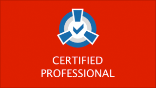 CERTIFIED PROFESSIONAL CONSUTLING (CCP) logo